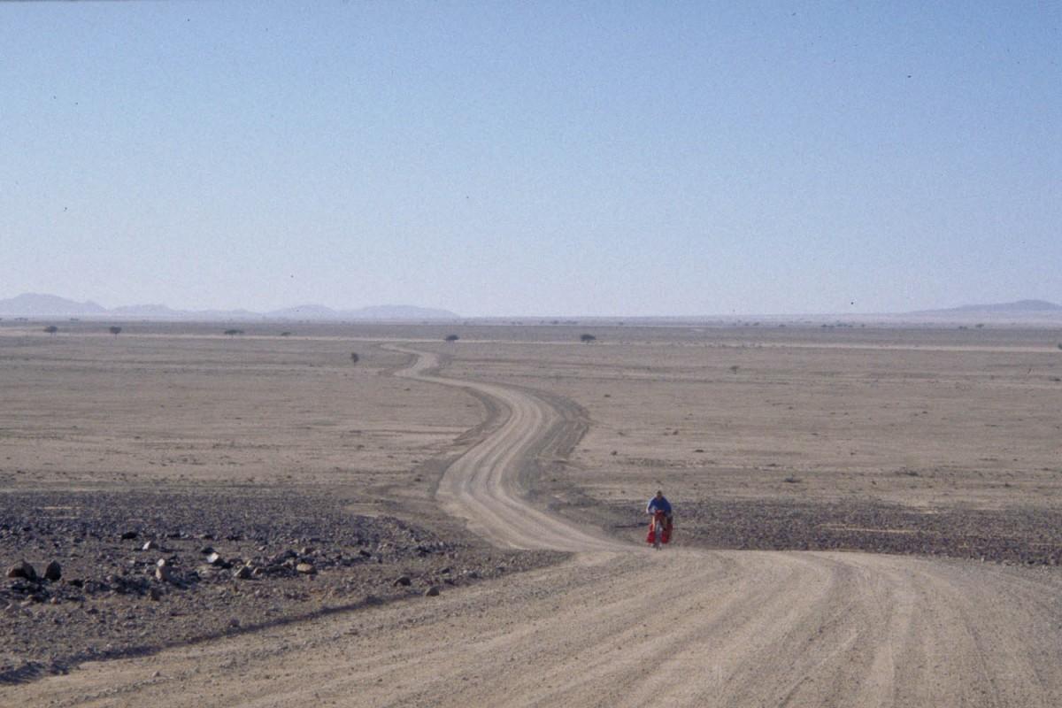 in the Namib Desert