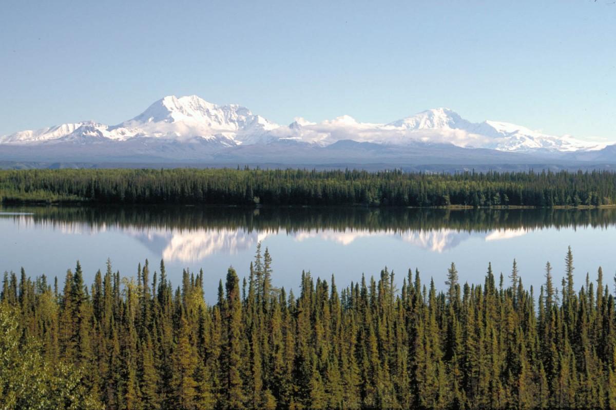 Wrangell Mountains reflecting in Willow Lake