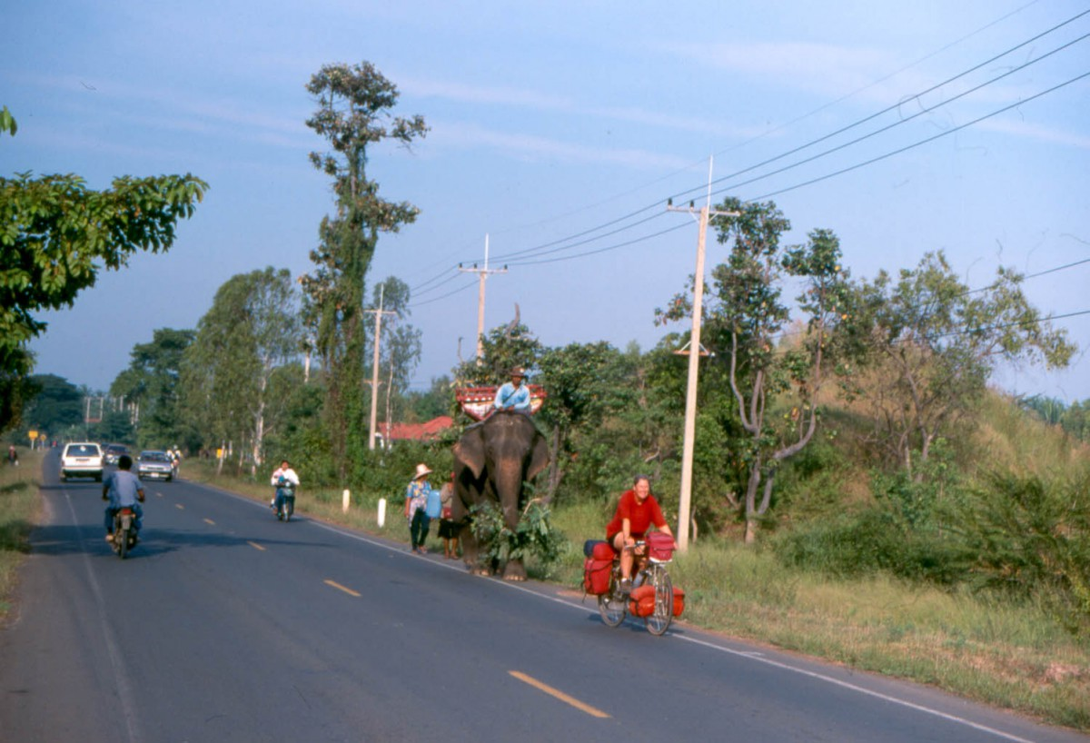 meeting an elephant on the road near Surin
