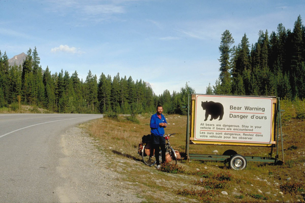 look out for bears and stay in your car