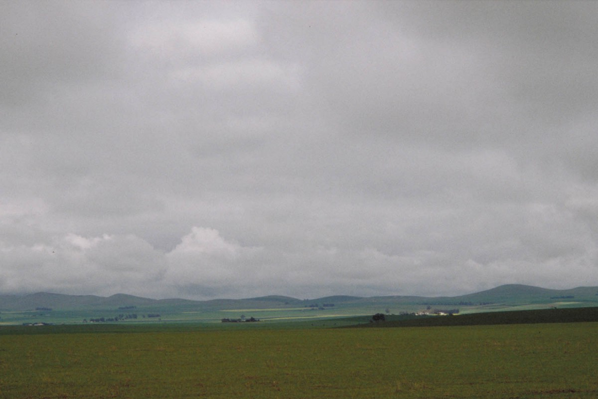 The green pastures of south australiua